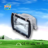200W 250W 300W 350W 400W 450W Lampe à induction Plaza Light