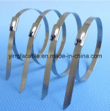 El fabricante de la atadura de cables de 316 Ss del acero inoxidable con Ce del SGS RoHS certifica 4.6*200m m