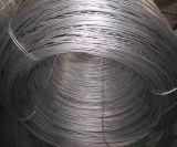 Fil du fer Wire/Gi de /Galvanized de fil obligatoire de Gi