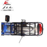 """20 """" Fiets van het Frame van de Legering van het Aluminium de Elektrische Vouwende 36V 250W (jsl039z-9)"""