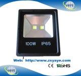 A luz de inundação ao ar livre a mais nova do diodo emissor de luz do Sell 100With60W da parte superior do projeto de Yaye 18 & 100With60W diodo emissor de luz ao ar livre Tunnellight com Ce/RoHS