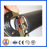 Câble d'alimentation reconnu par ce électrique de câble d'alimentation utilisé dans la construction