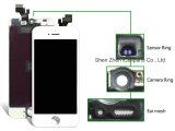 LCD rastern für iPhone 5 Schwarzes - AAA-Qualität
