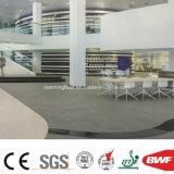 Anti-Bakterium Hochleistungs1.6mm heterogener Vinylfußboden für Einkaufszentrum