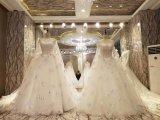 Vestito da cerimonia nuziale Stunning di unione della sposa di nuovo disegno