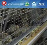 Tipo 4 jaula de H de la parrilla del pollo de las gradas con el acoplamiento de alambre galvanizado caliente (H-4L120)