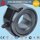 Heißes verkaufenRollenlager der qualitäts-Lz2822 für Geräte
