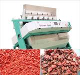 Anhui RVB triant le type trieuse de machine de développement des graines de couleur de sésame de CCD
