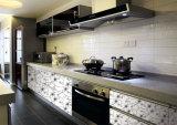 Gabinetes de cozinha acrílicos modernos do teste padrão do teste padrão de flor