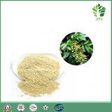 Vendita calda Astilbin puro 15%, 98%; Estratto di Astilbin, antiossidante