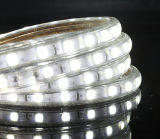 Tiras del cambio LED del color del alto brillo SMD 5050