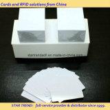 Cartões no cartão branco em branco do plástico do cartão do PVC do cartão