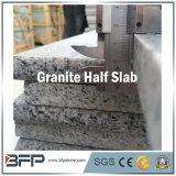 Granit, marbre, dessus de vanité de pierre de brame de quartz et partie supérieure du comptoir de cuisine
