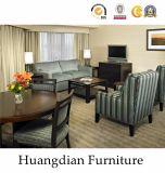カスタムホテルのアパートの部屋および居間の家具(HD023)
