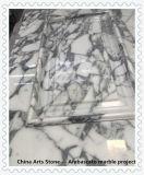 Italië Bianco Arabascato Statuario, Wit Marmer Calacatta