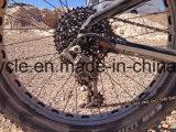 [هيغقوليتي] كهربائيّة دهن [إ] درّاجة مع [بفنغ] [مإكس] منتصفة إدارة وحدة دفع نظامة /Fat إطار العجلة [إ] درّاجة ([س-2621])