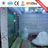 2016 최신 판매 눈 얼음 만드는 기계
