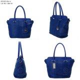 De speciale Handtassen van de Vrouw van Pu