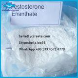 Testoterone anabolico chimico grezzo Enanthate della polvere dell'ormone steroide per Bodybuilding