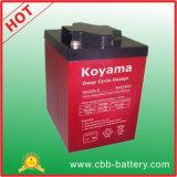 Tiefe Schleife-Batterie-Gel-Batterie-Marinebatterie-Golf-Wagen-Batterie-elektrischer Träger Battery-6V225ah