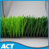 Hierba artificial para el balompié o el campo de fútbol (Y50)