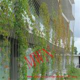 ステンレス鋼庭の機密保護のための適用範囲が広いロープの網