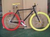 최신 판매 고침 기어 자전거 Sr MTB307
