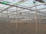 Estufa de vidro inteligente da agricultura da Multi-Extensão