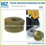Z.B. /Electro-Galvanized-Ring-Draht-Nagel