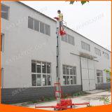 levage simple électrique hydraulique du mât 120kg