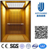 [أك] [فّفف] غير مسنّن إدارة وحدة دفع مسافر مصعد بدون آلة غرفة ([رلس-221])