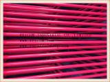 Rode het Schilderen Gang door de Frames van de Steiger van het Type