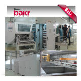 Pulitore ultrasonico Cina Bakr Sinobakr (BK-6000)