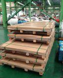 304 de Platen van het roestvrij staal met Uitstekende kwaliteit in de Leveranciers van China