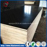 Madera contrachapada Shuttering hecha frente película impermeable de la construcción para la abrazadera Shuttering