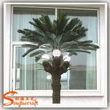人工光のプラスチックヤシの木をつける美しい屋外の装飾