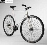 700C choisissent le vélo de vitesse fixe par vitesse (TM-FG20)