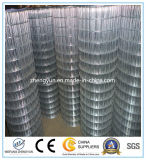 Rete metallica galvanizzata del ferro/rete metallica saldata