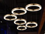 Stahlhängende Lampe des umlauf-LED (WHG-8233)