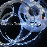 Iluminación de tira de voltio 5050SMD LED de la luz de la Navidad de la marca de fábrica 24V RGBW