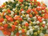 중앙 동쪽 시장 최신 판매는 혼합 야채를 통조림으로 만들었다
