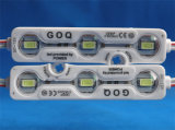 IP68는 옥외 광고를 위한 5730의 주입 LED 모듈을 방수 처리한다