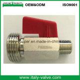 Mini valvola a sfera d'ottone cromata/piccola valvola del tubo flessibile (AV-MI-2008)