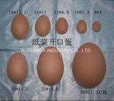 Rectángulo de regalo de empaquetado Shaped del rectángulo de la celulosa del huevo