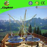 Sale (BG20)のための新式のBungee Trampoline