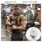 Testosterona esteróide Enanthate do pó de 99% para o Bodybuilding