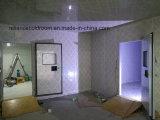 Глубоко - комната замораживателя холодная для замороженных продуктов