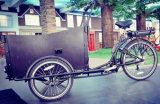 大きいキャリアボックス3車輪の貨物バイク
