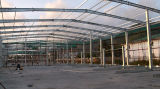 Light professionale Movable Steel Structure per Warehouse (SL-0062)