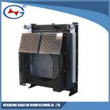 Wd129tad19: Radiador del agua para el conjunto de generador de Cummins